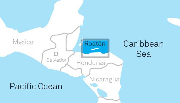 Roatn Volunteer Pediatric Clinic Understanding Roatn